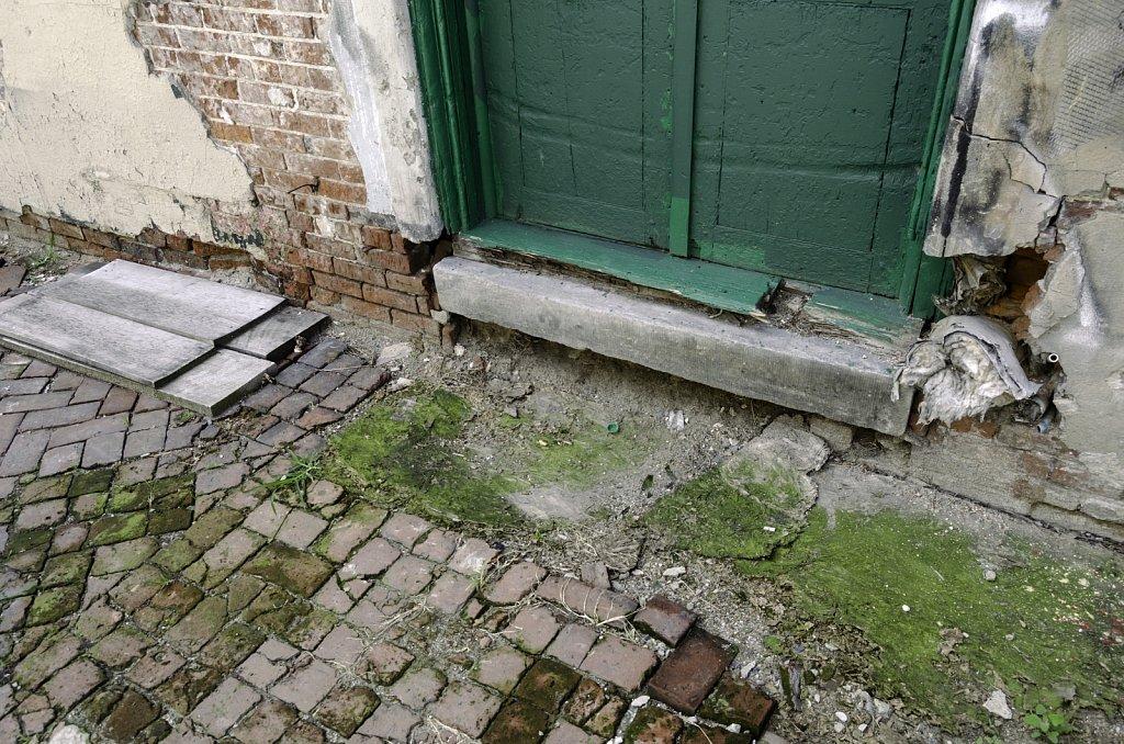 Green Door and Moss